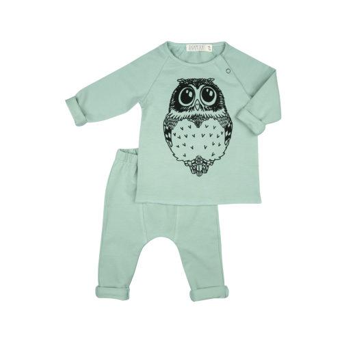 BabySet_Owl