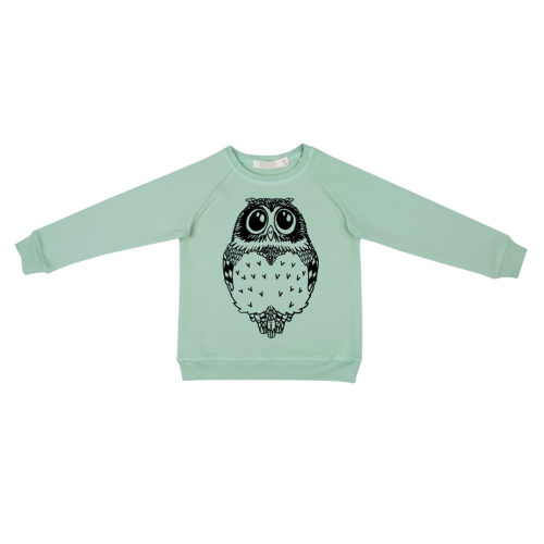 Pullover_roh_owl